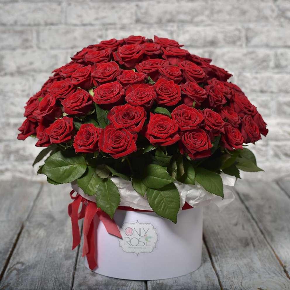 Советы по содержанию розы